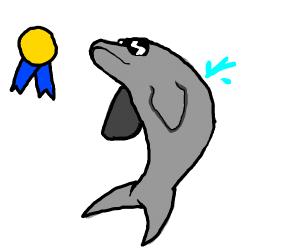 a swag dolphin won the best dolphin award
