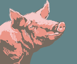 Detailed Pig (good drawers please)