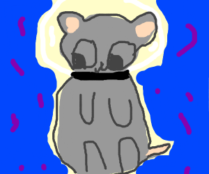 Rat from the Future