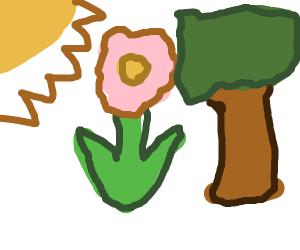 Sunflowertree