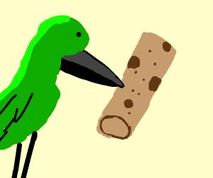 Hummingbird harvesting a Burrito