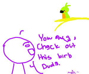 """""""Yow (gibberish) check out this BIRB DUDE"""""""