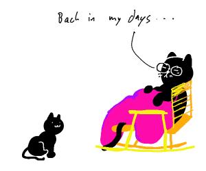 Memory cat