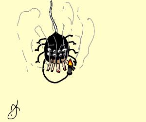 creepy lookin spider smokin (5th cig)