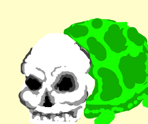 A skull turtle asks you to look over here