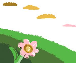 pretty spring picture