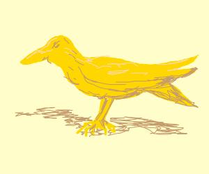 Golden Crow