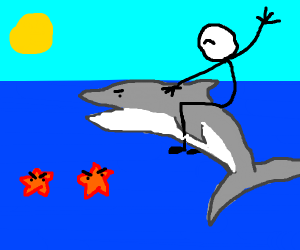 Man riding shark encounters angry starfishes