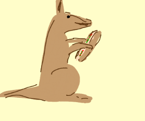 Kangaroo eating a hotdog