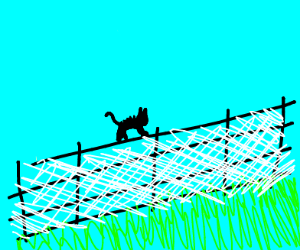 Cat on an electric fence