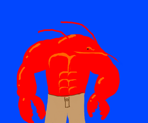 buff fancy lobster