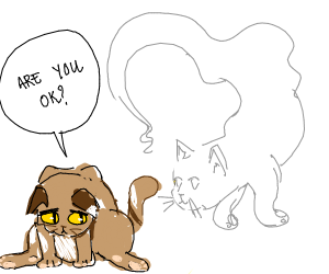 Sad cat asks his dead cat friend if he's ok