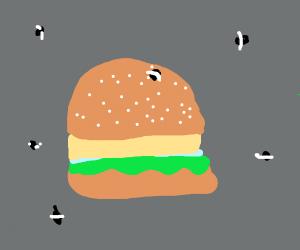 Hamburger and flies
