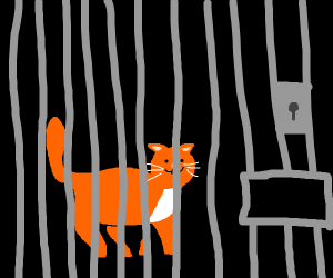 Cat in jail/prision :(