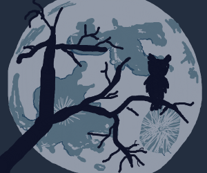 owl looking at the moon