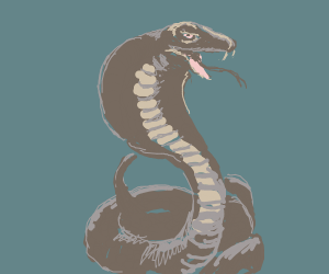 Cobra snake in a basket