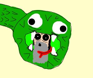 Old man inside snake's body