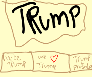 Trump support flyers