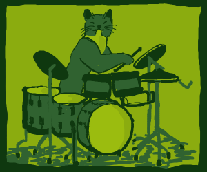 Cat plays the drums