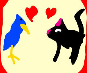 Black cat and blue bird in love
