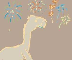 Sauropod watching fireworks