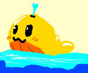 cute whale