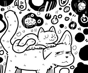 Kitten sitting on a cat's head