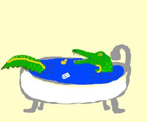 Alligator taking a bath
