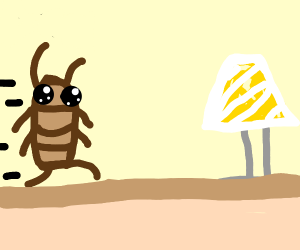 Cockroach running to a lamp on two legs