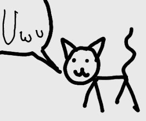 Uwu says the cat
