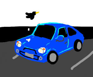 bird does poo poo on blue car