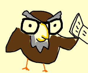 wise owl reads book