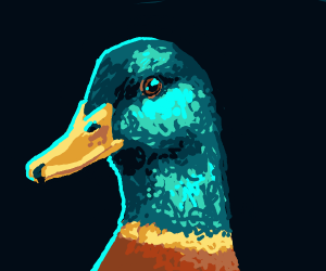A well drawn duck