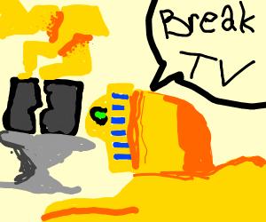 Sphynx breaking a TV