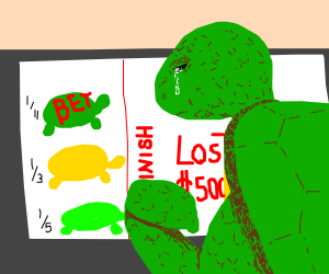 A turtle losing its money to gambling