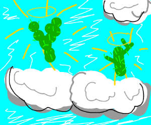 All cactus go to heaven