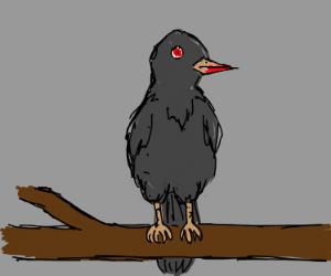 Vampire crow