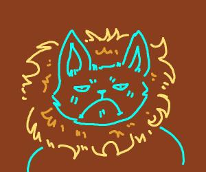 Grumpy Cat, the lion version.