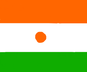 Flag of Niger (African Country)