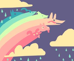 Dog rainbow