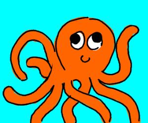 derpy octopus