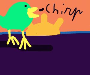 Bird chirping at dawn