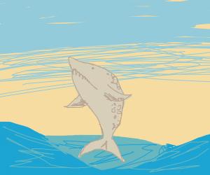 Foam Shark in a paper mache ocean