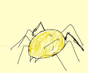 Spider Potato