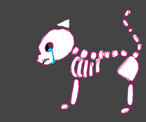 Depressed skeleton cat