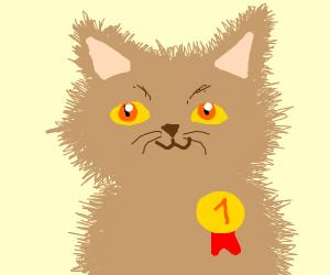 Fluffiest Cat Award