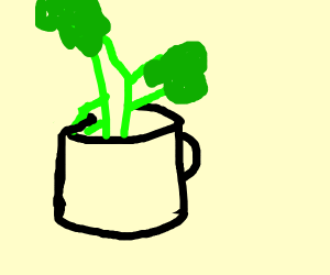 celery in a cup