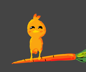 torchic on a carrot