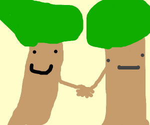 2 trees hold hands and lean to each other
