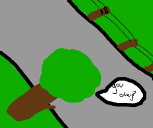 tree asks powerline if he's good